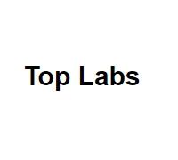 Логотип: TopLabs - создание сайтов