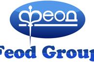 Логотип: Feod Group Феод Групп
