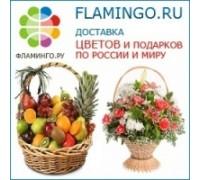 Логотип: Фламинго.ру