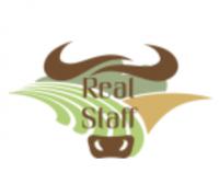 Логотип: Real Staff